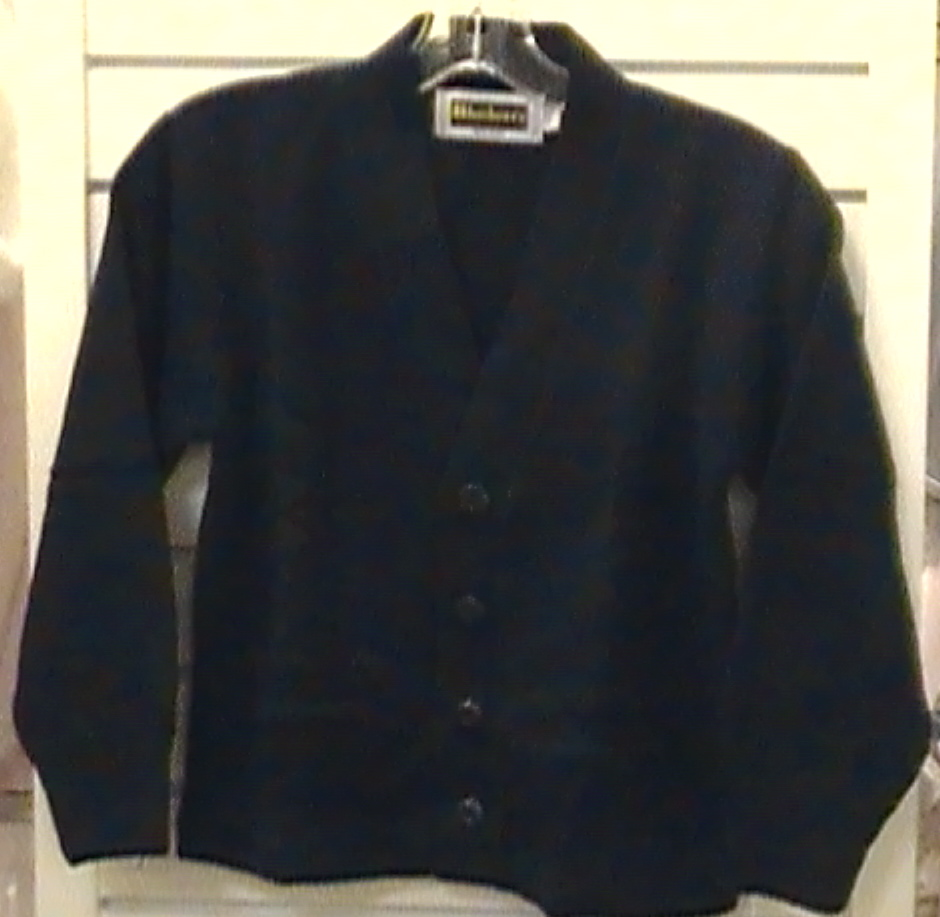 Navy V-neck Cardigan